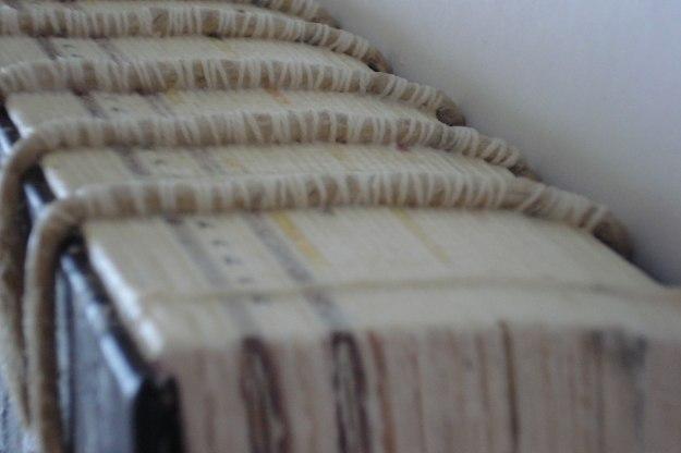 wildchild-spine-detail